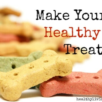 Make Your Own Healthy Dog Treats
