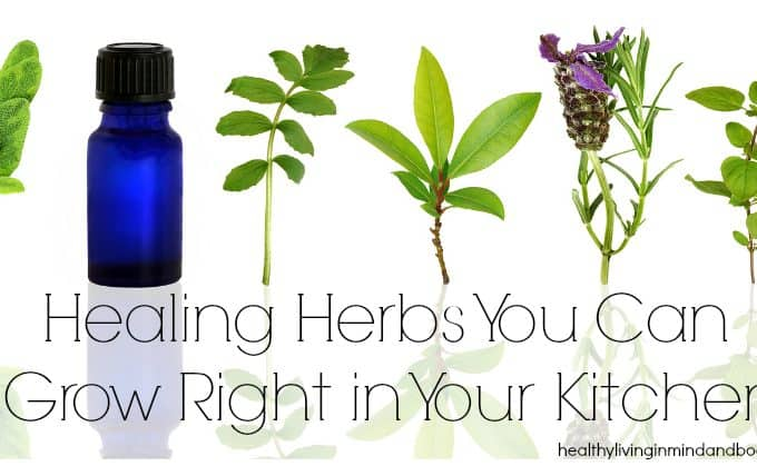 Healing Herbs You Can Grow Right in Your Kitchen