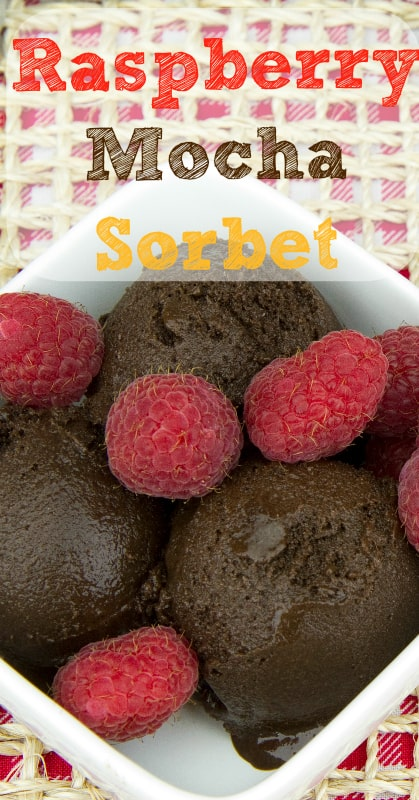 Raspberry Mocha Sorbet