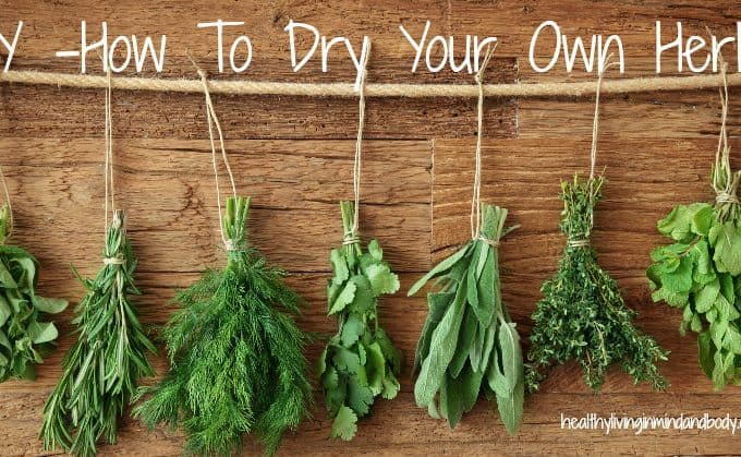 DIY How to Dry Your Own Herbs