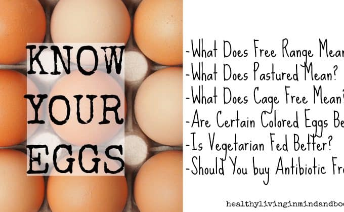 What you need to know BEFORE buying store bought eggs