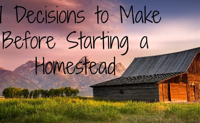 17 Decisions to Make Before Starting to Homestead