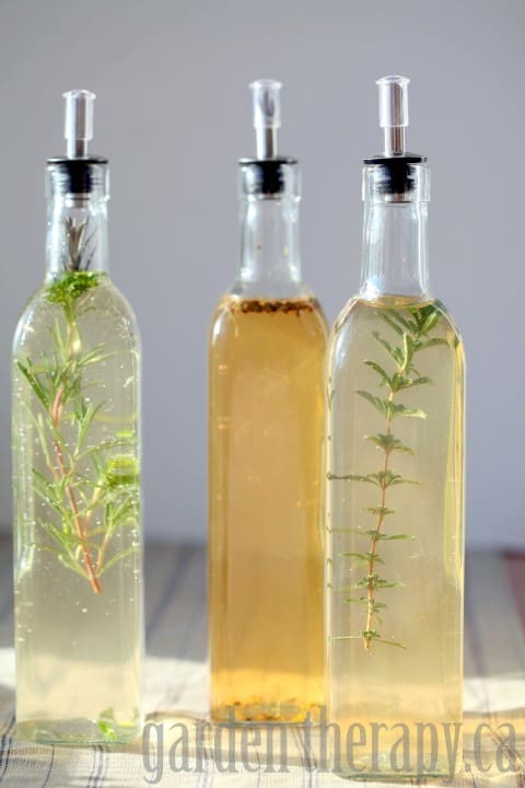Fennel and Citrus Infused Vinegar - Infused Oil and Vinegar Round-Up | Healthy Living in Body and Mind